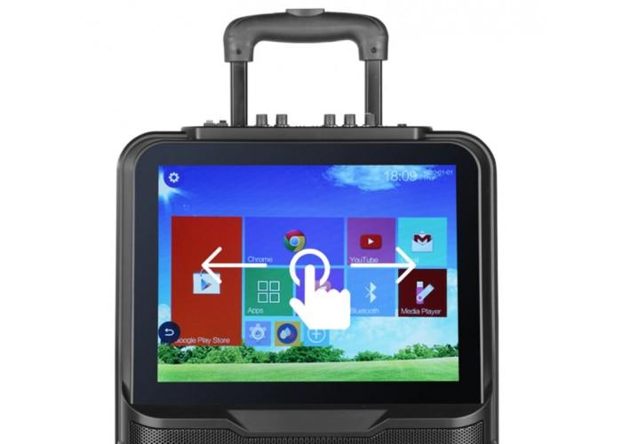 Караоке онлайн колонка Shinco 250-300 Вт WiFi, с двумя микрофонами.