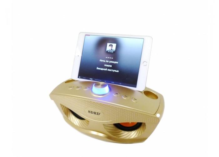 Караоке Колонка OWL SDRD SD-306 с радиомикрофонами и Bluetooth black