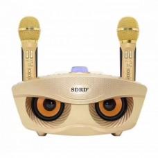 Караоке Колонка OWL SDRD SD-306 с радиомикрофонами и Bluetooth gold