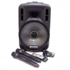Колонка(Комбоусилитель) на АКБ с двумя радиомикрофонами 70-100 Вт.