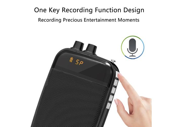 Громкоговоритель-мегафон ORATOR mini . 35 Вт с mikro SD и радио